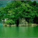 Vẻ đẹp vịnh Lan Hạ ở đảo Cát Bà