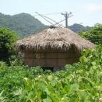 Làng Việt Hải đơn sơ, thơ mộng ở khu du lịch Cát Bà