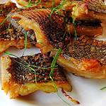 Rắn biển và tôm hùm – 2 món ngon độc đáo ở đảo Cát Bà