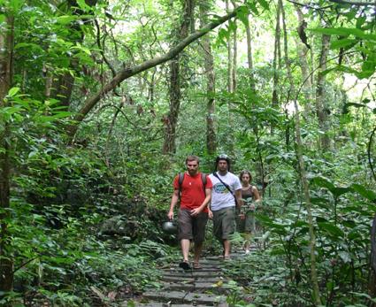 Du khách khám phá rừng Quốc gia Cát Bà